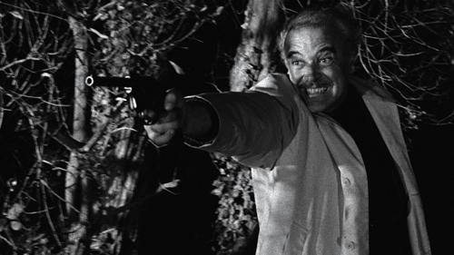 【專題】名導恐怖初體驗《教父》導演法蘭西斯柯波拉的「 驚魂記 」《Dementia 13》(下)