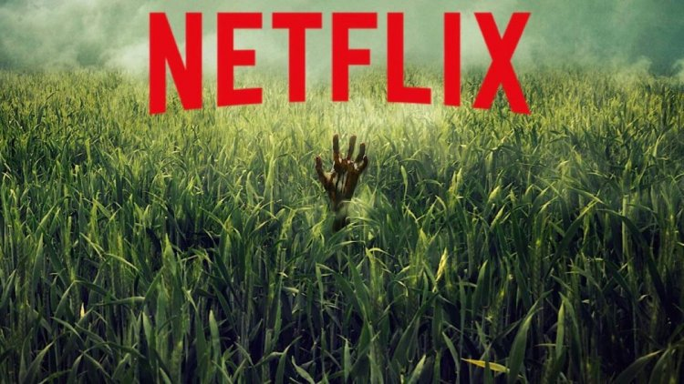【線上看】這片草原很有問題!改編自史蒂芬金作品《高草魅聲》預告公開!驚悚宇宙作品再+1,Netflix 10/4 上線首圖