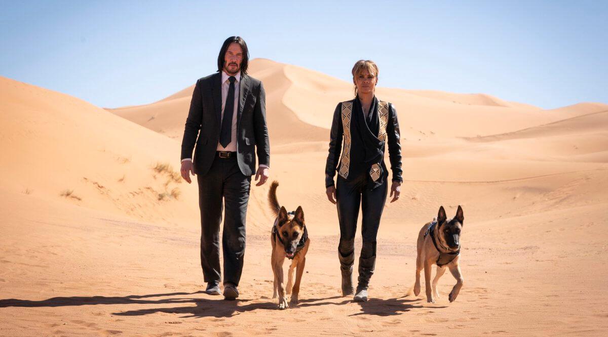 《捍衛任務 3》新劇照多了荷莉貝瑞以及 2 隻狗!
