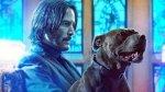 真・地表最強愛狗人士 :《捍衛任務 3》推狗狗版特別影片慶祝「國際狗狗節」!