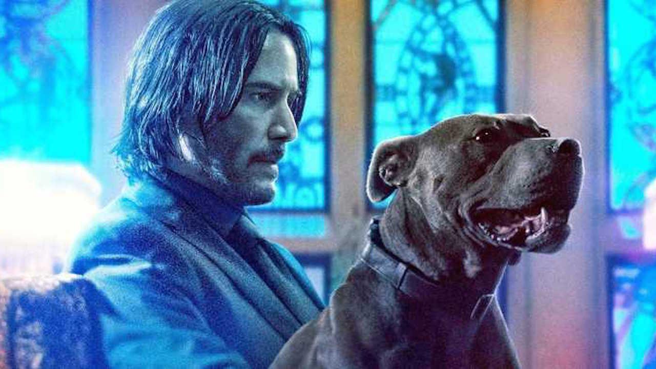 真・地表最強愛狗人士 :《捍衛任務 3》推狗狗版特別影片慶祝「國際狗狗節」!首圖