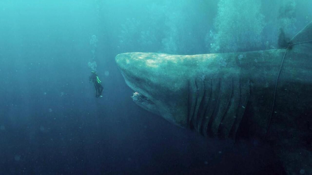 【專題】恐怖系列:巨齒鯊 (三) 離奇科幻不再,久違的生物感鯊魚片