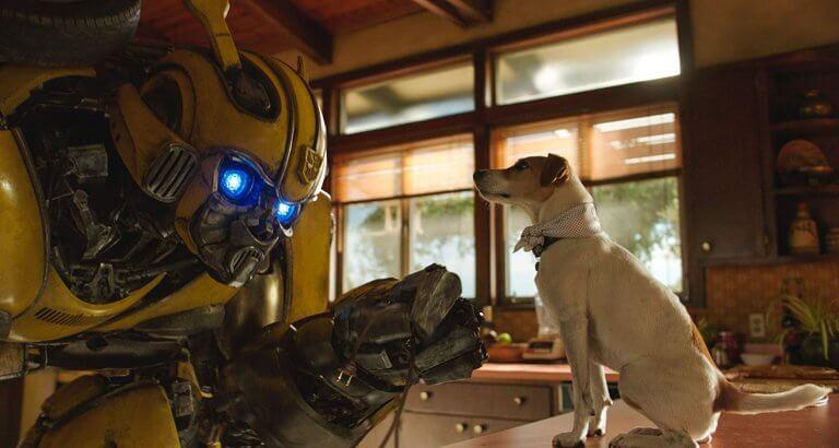 《大黃蜂》為變形金剛系列外傳,片中細膩的電腦動畫讓大黃蜂更加充滿情感。