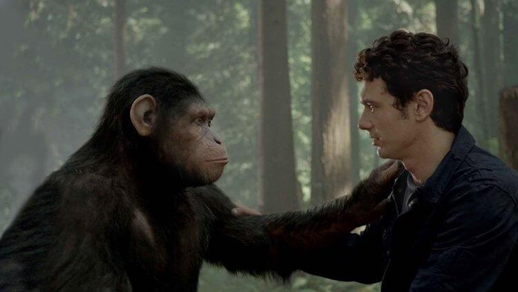 猿族,不想要戰爭!迪士尼將繼續發展《猩球崛起》系列首圖