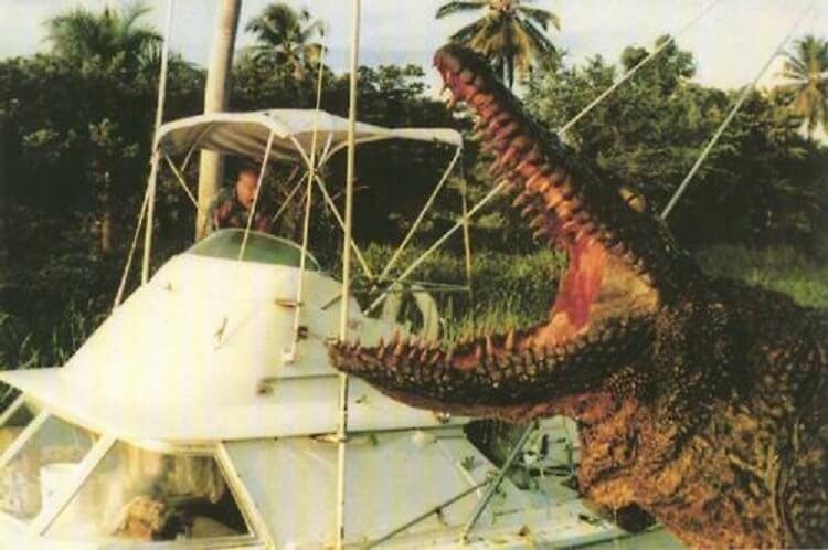 1989 年義大利電影《奪命大鱷魚》。