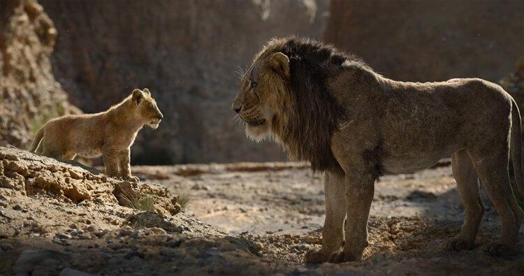 睽違 25 年,迪士尼將手繪動畫電影提昇至全新層次!2019 年採用最新視覺特效打造出「真獅版」《獅子王》電影。