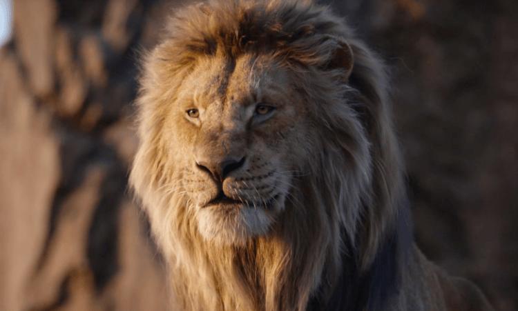 迪士尼的「真獅版」《獅子王》電影目前為影史最賣座電影第七名。