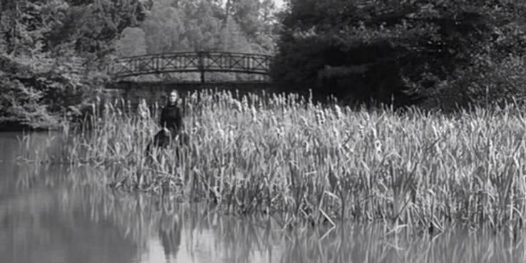 《碧廬冤孽》在 1961 年被改編為《惡魔附身的小孩》(The Innocents)