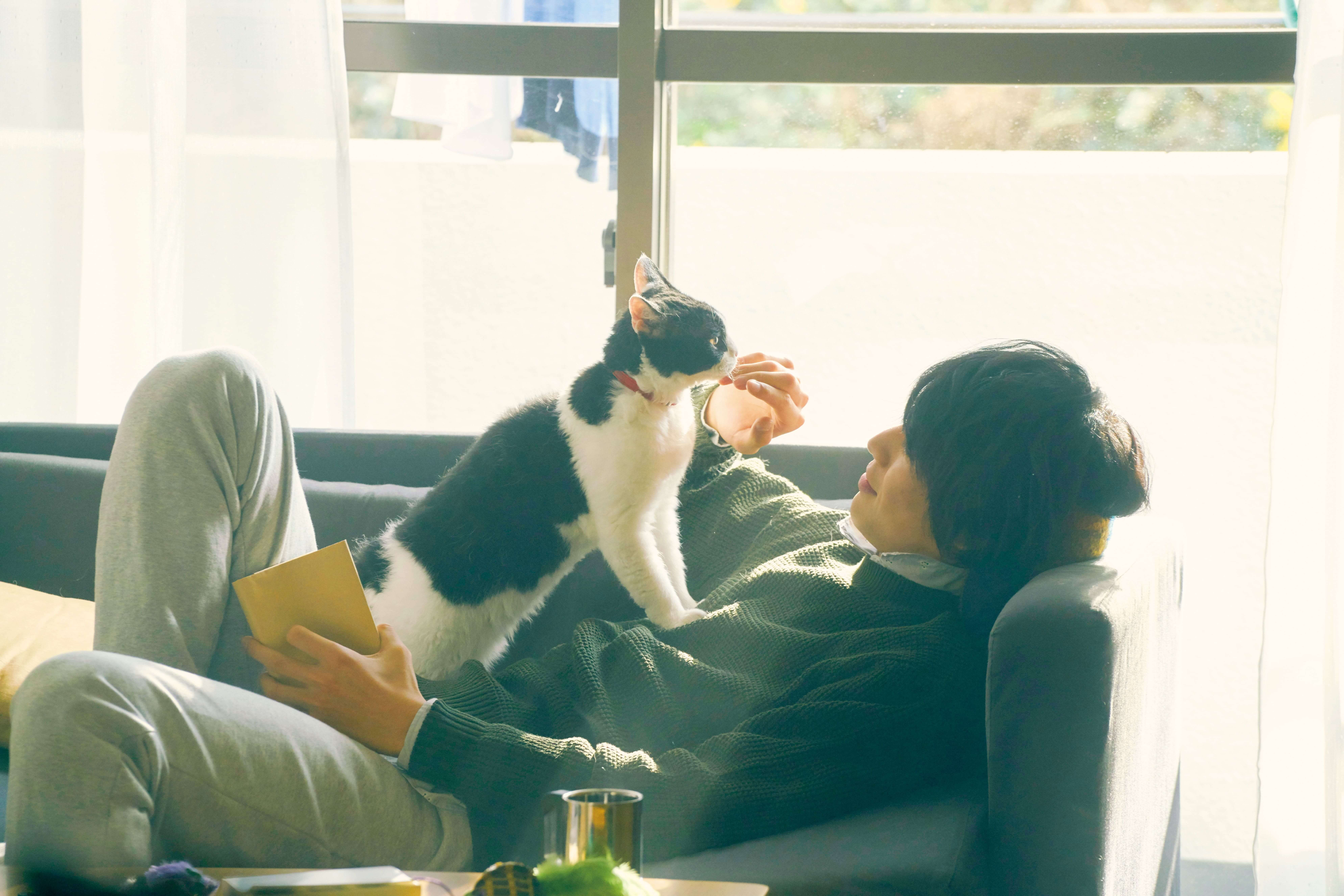 《旅貓日記》劇照