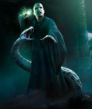 《 哈利波特 》系列中的反派 : 佛地魔 與寵物蛇「 娜吉妮 」。