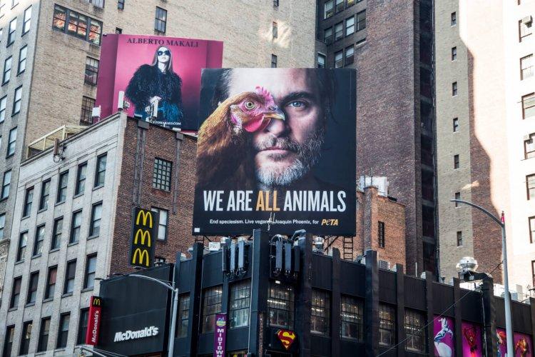 瓦昆菲尼克斯 (Joaquin Phoenix) 「We Are All Animals」大型廣告看板