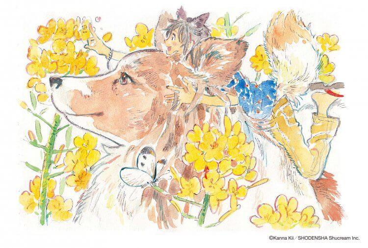 《海邊的異邦人》原作漫畫作者紀伊カンナ畫風十分可愛。