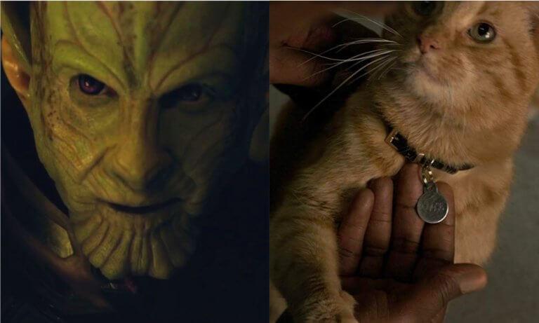 影迷十分看好由班德曼森飾演的史克魯爾人將軍「塔羅斯」,以及貓咪「呆頭鵝」在《驚奇隊長》中的表現。