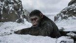 猿族戰爭仍未止息!《移動迷宮》導演威斯柏執導筒,全新的《猩球崛起》系列籌備中