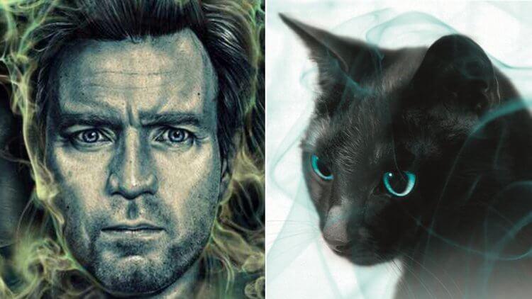 史蒂芬金《安眠醫生》丹尼「閃靈」超能力創作靈感,竟來自一隻預知生死的貓首圖