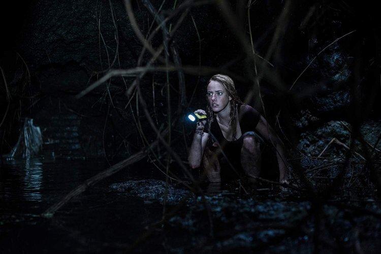 山姆雷米監製,亞歷山大阿甲導演,派拉蒙影業發行的恐怖驚悚片《鱷魔》已在台上映。