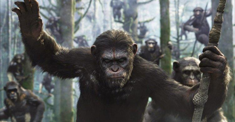 《猩球崛起:黎明的進擊》劇照。