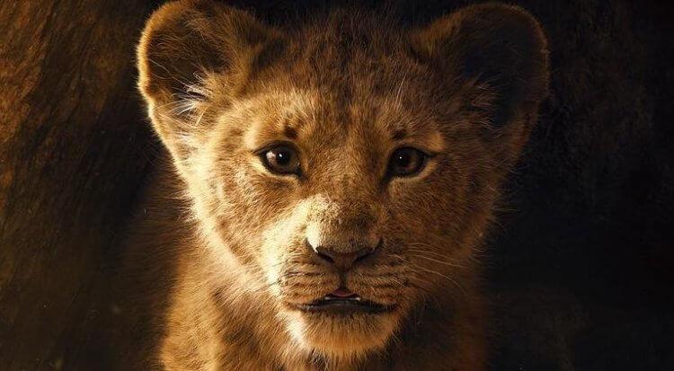 《獅子王》人氣依舊,累積票房已經來到影史第九,直追《玩命關頭 7》。
