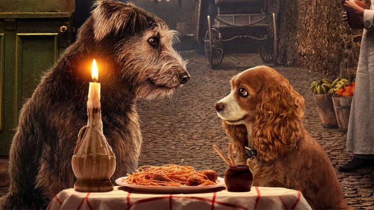 【Disney+】狗派站出來!《小姐與流氓》首支預告公開,重現經典浪漫義大利麵約會首圖