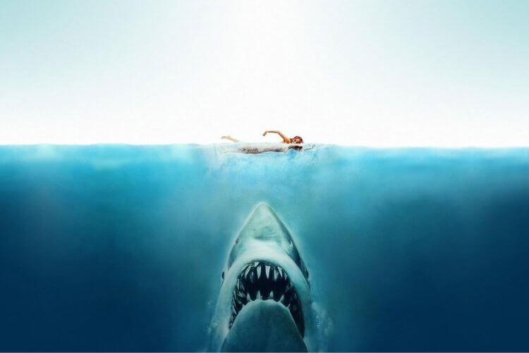 近期上映滿 45 年的《大白鯊》也是改編成功的經典案例。