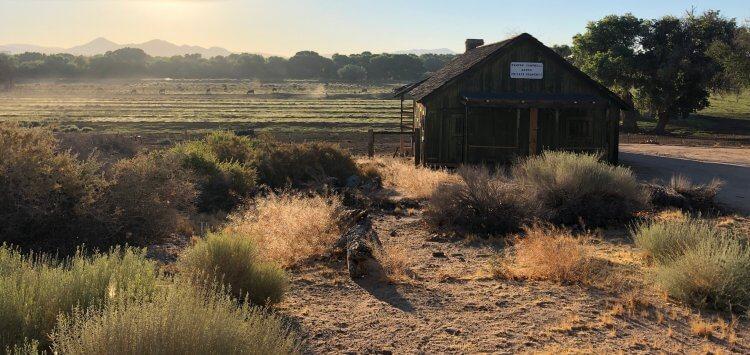 Kemper Campbell 牧場是曼克完成《大國民》草稿所待的場所。