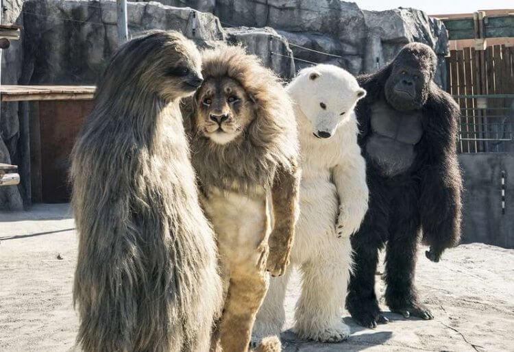 韓國喜劇電影《超人氣動物園》中,員工換上動物裝盼吸引遊客入園。