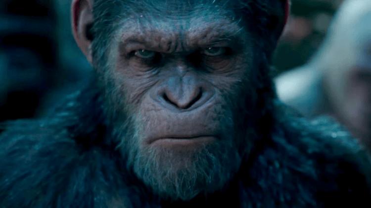 《移動迷宮》導演威斯柏執導的《猩球崛起》系列作品可能會是重啟之作。