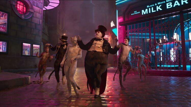 《貓》是改編安德魯洛伊韋伯的經典百老匯舞台劇。