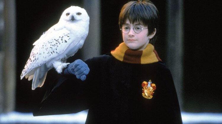 《哈利波特:神秘的魔法石》丹尼爾雷德克里夫。