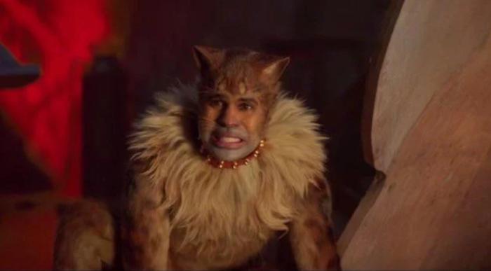 《貓》傑森德魯羅。