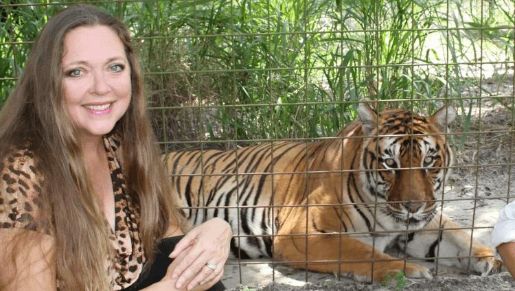 《虎王》「大貓拯救」老虎保護園區的卡蘿巴斯金。