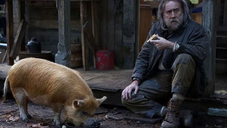 《豬殺令》。
