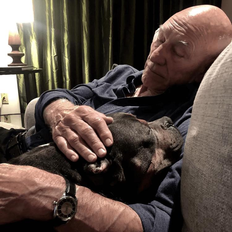 派屈克史都華與他領養的比特犬。