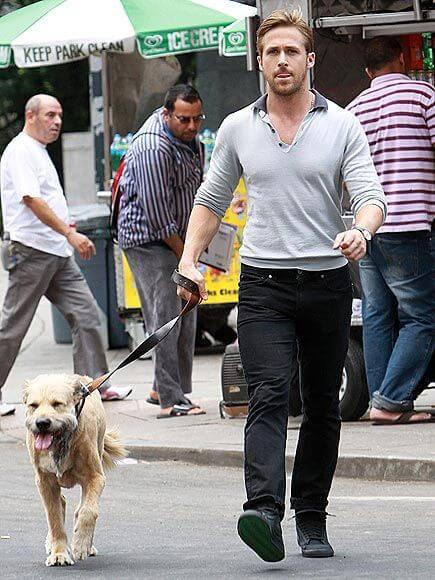 雷恩葛斯林與他的狗狗喬治。