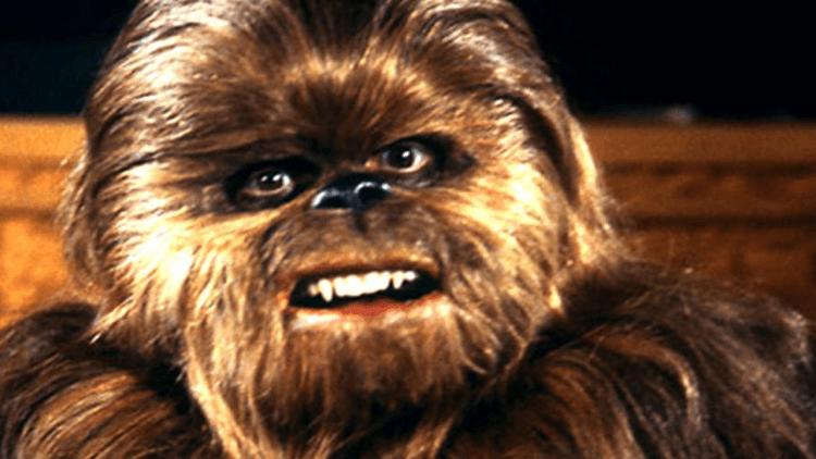 《曼達洛人》提及的「生命節」,在《星際大戰:假日特別節目》中首度被提起。