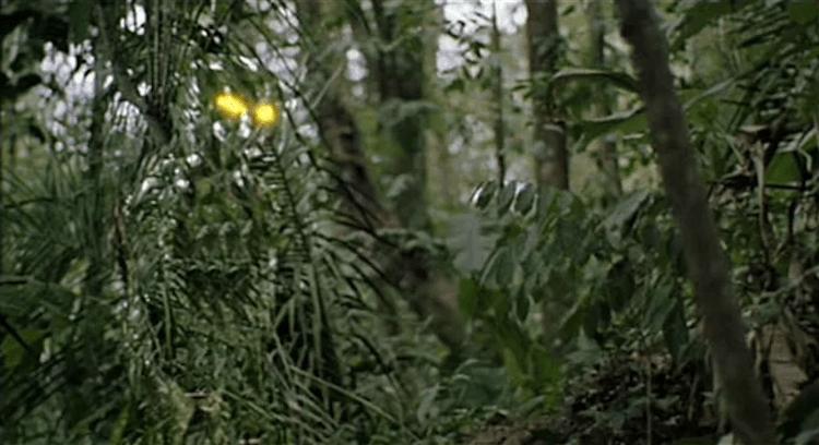 《終極戰士》(The Predator) 劇照。