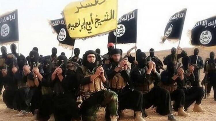曾引發包含 911 事件等世界級恐怖攻擊的武裝組織蓋達,阿富汗有其組織的數個大本營。