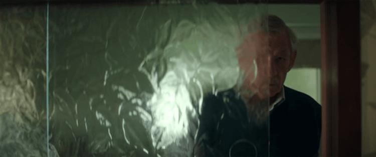 改編自同名小說的電影《大說謊家》中,伊恩麥克連飾演的羅伊。