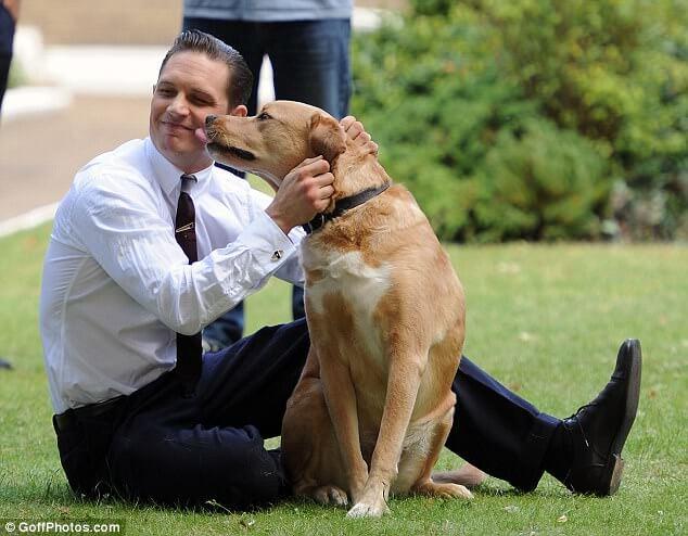 湯姆哈迪非常愛狗