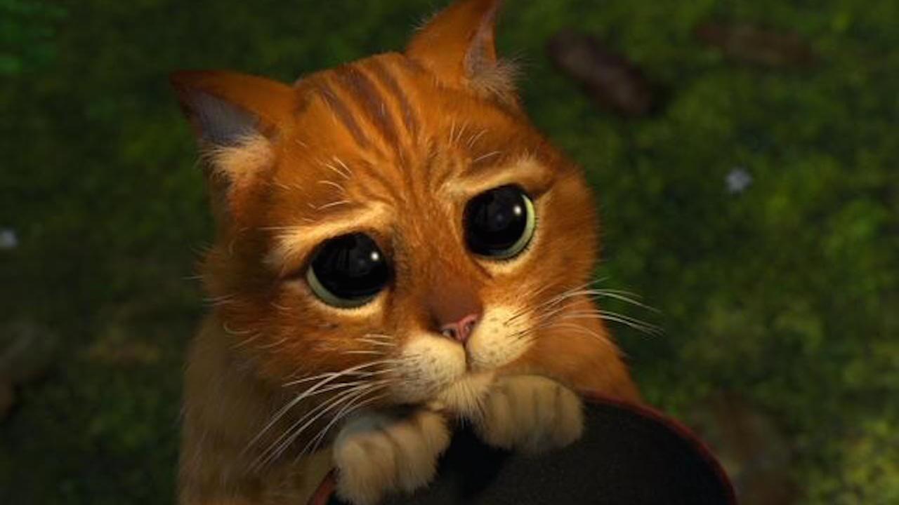 鞋貓回來了!《蜘蛛人:新宇宙》導演奪下奧斯卡後 將執導全新《鞋貓劍客 2》電影首圖