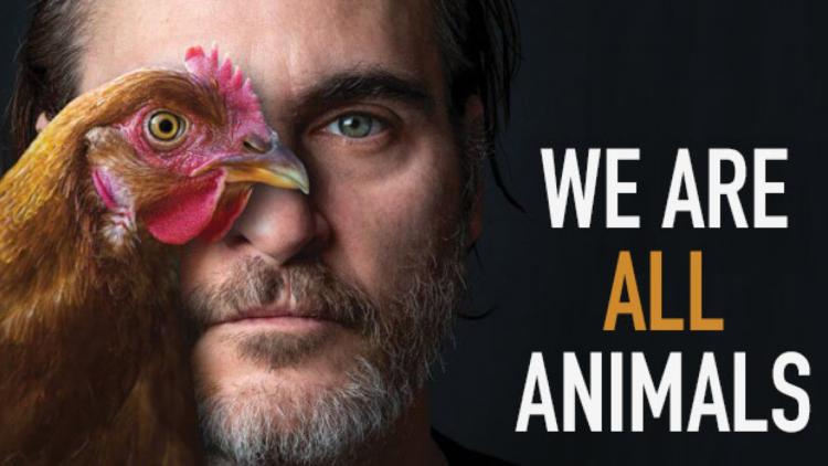 長期致力捍衛動物權益  「小丑」瓦昆菲尼克斯獲選善待動物組織 PETA「年度風雲人物」首圖