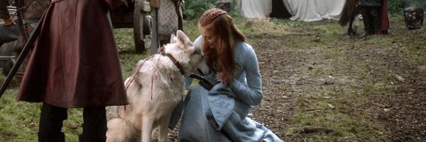 《權力遊戲》影集中,史塔克家族珊莎的冰原狼「淑女」。