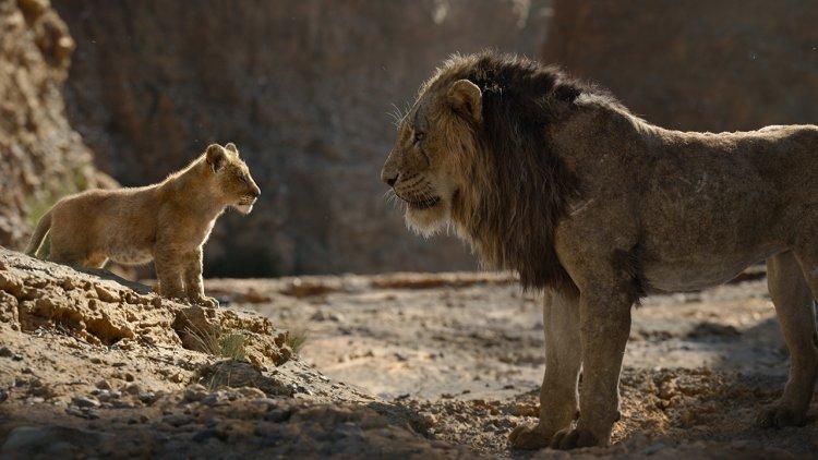 娜娜戲份將大幅增加?新版《獅子王》4 大看點整理首圖