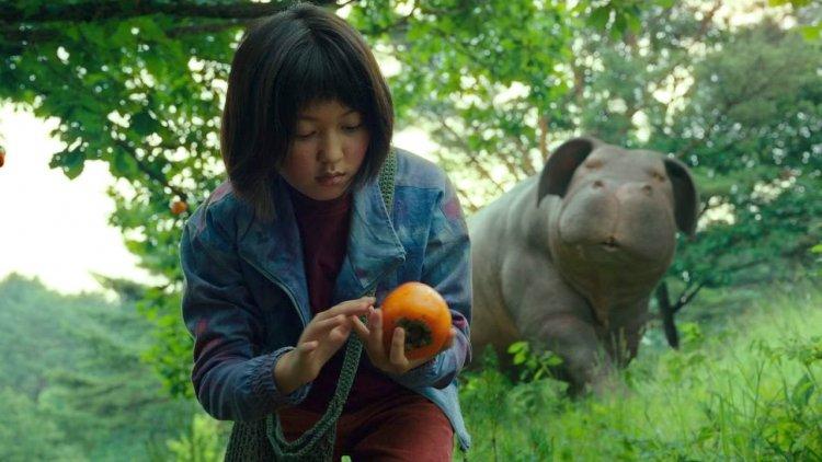 【線上看】影評《玉子》: 動物與人類的動人友情,奉俊昊帶給我們的動保議題之作首圖