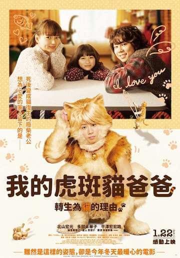 《我的虎斑貓爸爸》海報。
