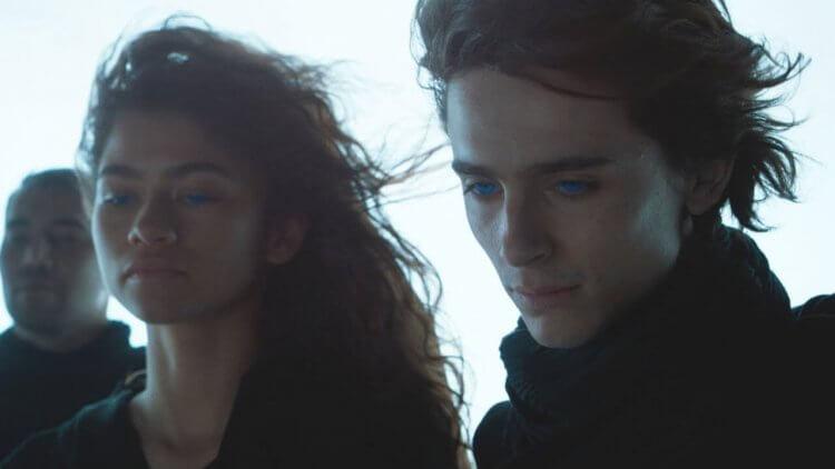 提摩西夏勒梅談擔綱《沙丘》主角的恐懼與挑戰,導演將其故事線比喻為「教父」之子麥可柯里昂首圖