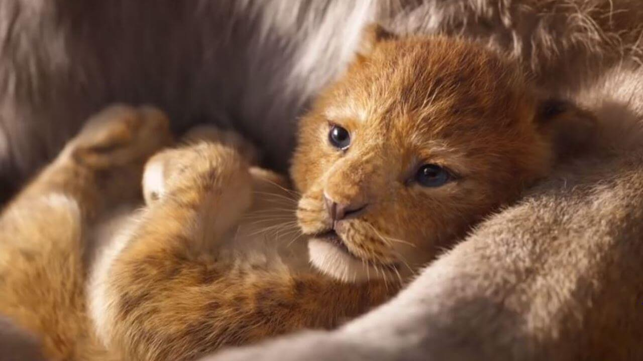 迪士尼《獅子王》經典回歸!「真人版」跟原版差在哪?六大問題一次整理!首圖