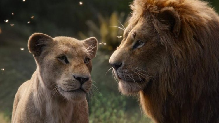 真正的王者降臨!《獅子王》首週票房碾壓《美女與野獸》!刷新迪士尼翻拍版開票紀錄首圖