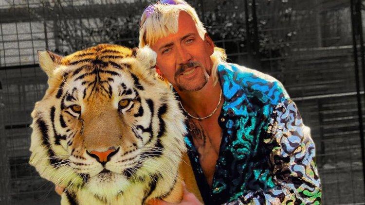 大貓之王誕生!尼可拉斯凱吉將在改編影集中飾演「虎王」異國喬首圖