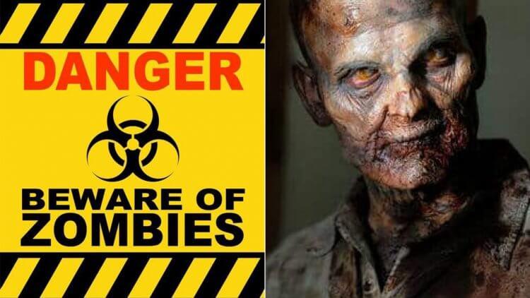 電影中的「活屍」危險性排行榜:哪些看到可以玩一下,哪些看到就死定了?首圖